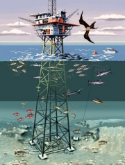 offshore_oil_rig_m